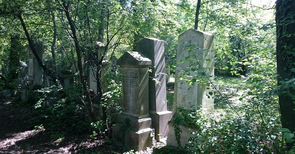 St. Marxer Friedhof - verwilderte Gräber 2 - www.wien-erleben.com
