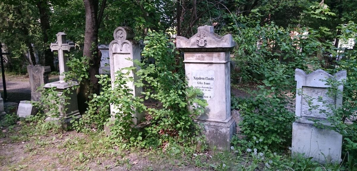 St. Marxer Friedhof - verwilderte Gräberreihen - www.wien-erleben.com