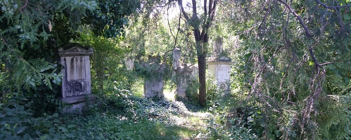 St. Marxer Friedhof - verwilderte Gräber im Park - www.wien-erleben.com
