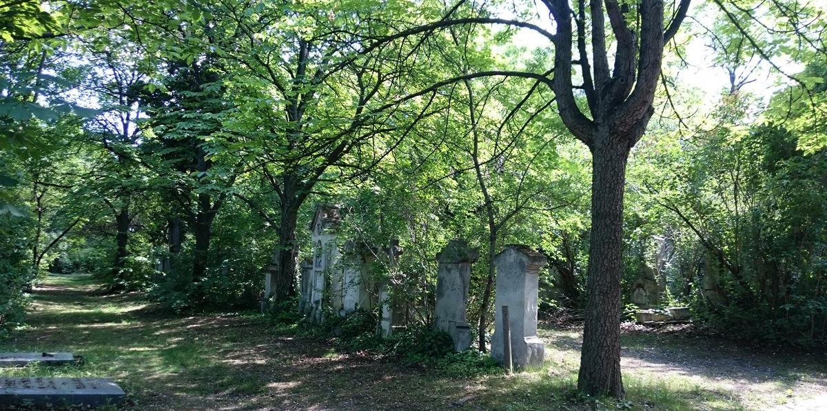 St. Marxer Friedhof - Gräberreihen im Park - www.wien-erleben.com