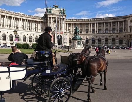 Beitrag über Fiaker in Wien vor der Nationalbibliothek- www.wien-erleben.com