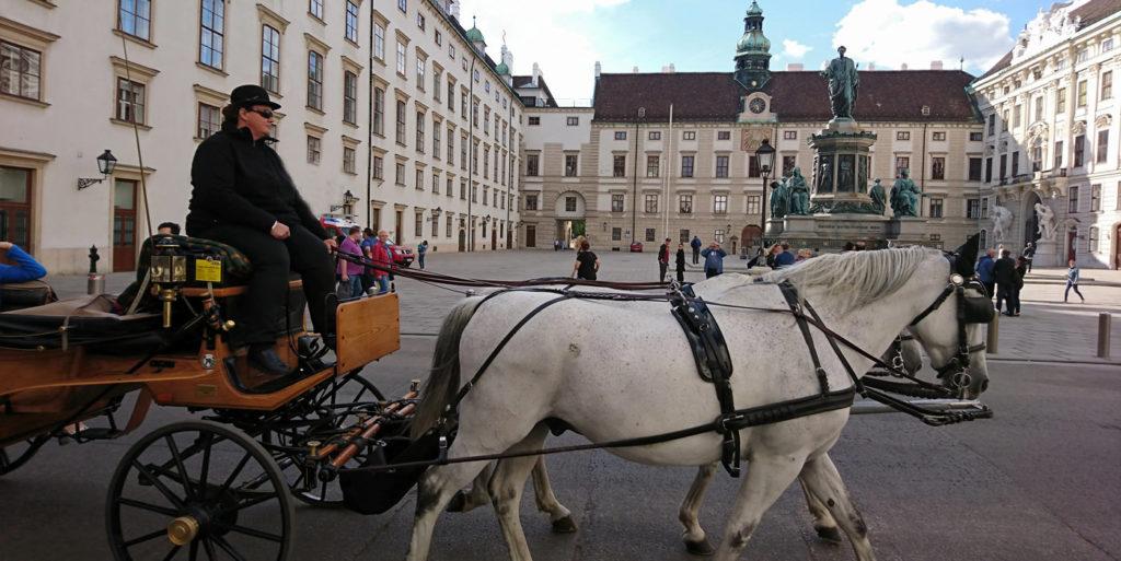 Fiaker in Wien vor dem Kaiser-Franz-Denkmal - www.wien-erleben.com