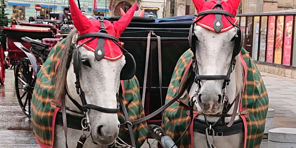 Wiener Fiakerpferde mit roter Haube - www.wien-erleben.com