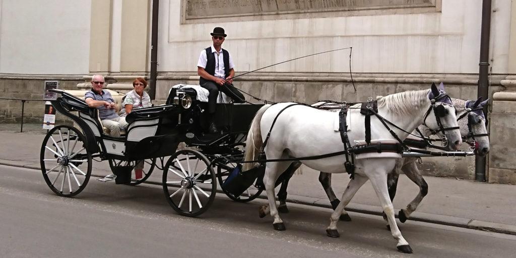 Wiener Fiaker seitlich vor der Peterskirche - www.wien-erleben.com