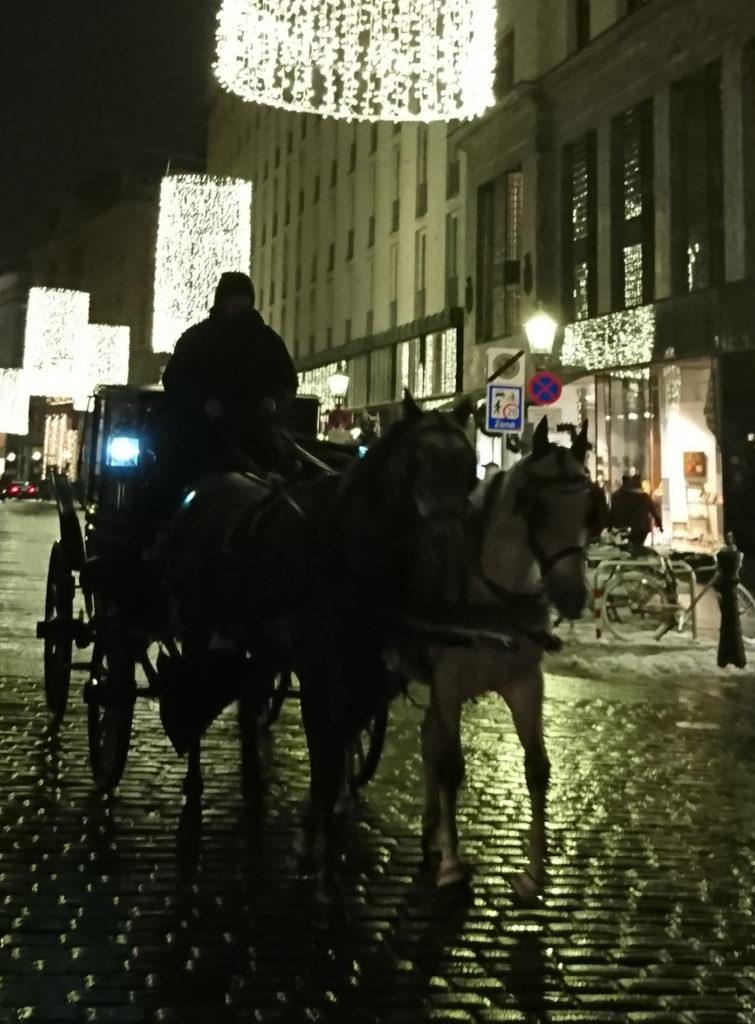 Wiener Fiaker als Schatten vor Weihnachtsbeleuchtung - www.wien-erleben.com