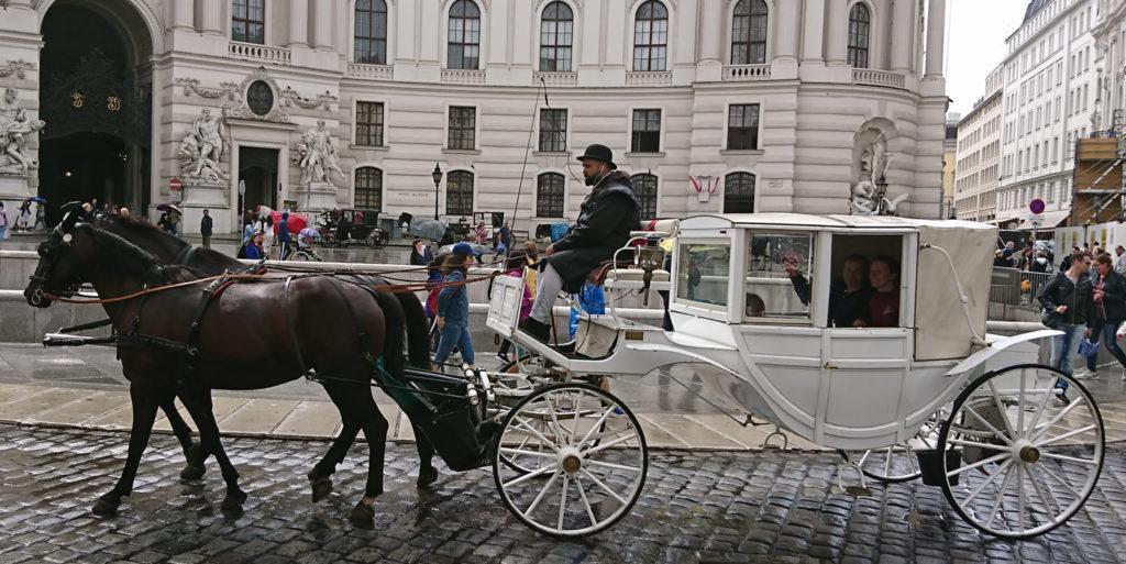 Wiener Fiaker mit weißer Kutsche vor der Hofburg - www.wien-erleben.com